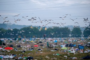 glasto clean up